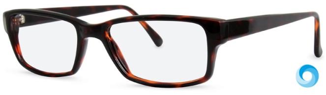 New Lenses ZP4007 C2 Glasses
