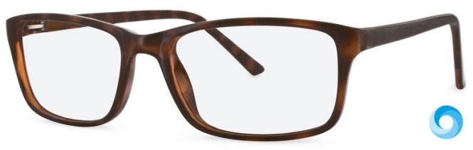 New Lenses ZP4011 C2 Glasses