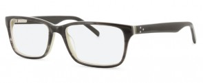New Lenses Premium JN8008 C2 Olive/Horn Glasses