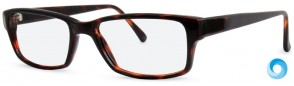 New Lenses ZP4007 C2 Glasses